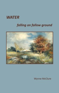 Water Falling on Fallow Ground (2013) by Wynne McClure (West Henrietta, NY: East River Editorial)